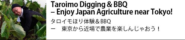 Taroimo Digging & BBQ